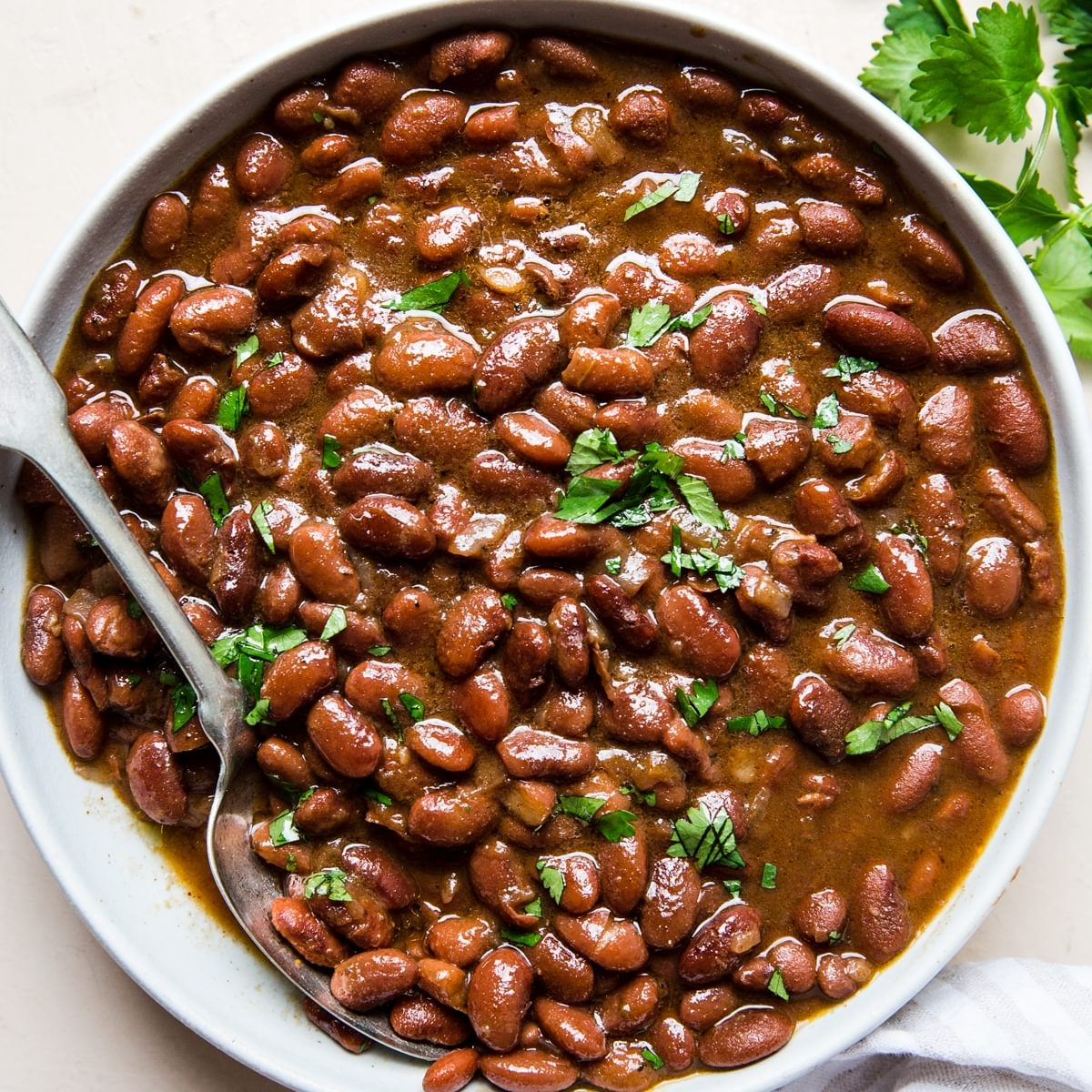 Instant Pot Mexican Pinto Beans The Modern Proper